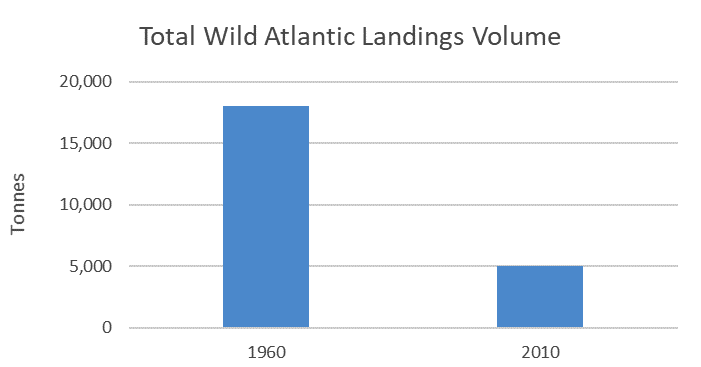 Total Wild Atlantic Landings Volume